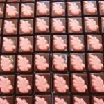 Σοκολατάκια υγείας με γέμιση βατόμουρο